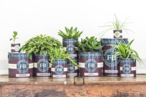 Farrow and Ball Farben Eco
