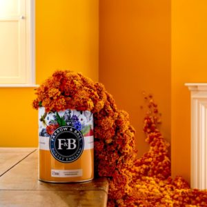 Farrow and Ball Colour by Nature Marigolds