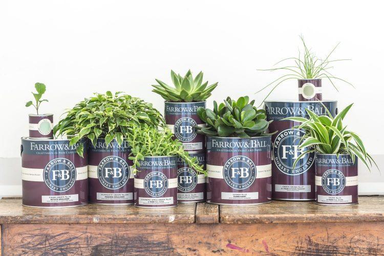 Farrow and Ball Farbgebinde mit Pflanzen