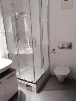 Fliese auf Fliese und Malerei auf Fliese Bad Dusche WC